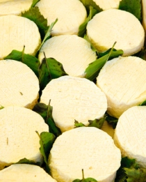 "A soft local goats cheese, called ""cabecou"" is available in most markets, and served in a variety of salads you'll see in restaurants."