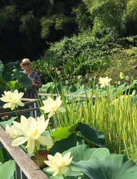 margaret with lotus