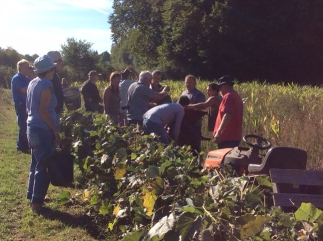 grapepickers